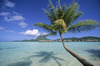 Thumb_625-hiresolution-lagoon_boraborapearlbeachresort