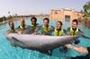 Thumb_marine_and_waterpark_dolphin_bay_04_03_2011_5088