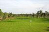 Thumb_pines_golf_course_02