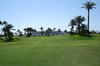 Thumb_golf_club_main