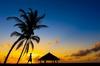 Thumb_maldives_maafu_sunset-0690-2