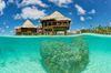 Thumb_rgi_kia_ora_overwater_bungalow_mckenna.gallery_image.3