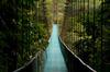 Thumb_costa_rica_bridge