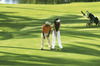 Thumb_one_only_golf_3