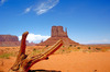 Thumb_monument_valley_2