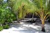 Thumb_maldives_islands-resorti_s4a8290