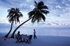Thumb_31._private_beach_dinner