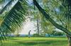 Thumb_ambre-resort_golf_