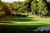 Thumb_golf_son_parc